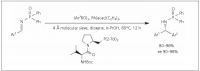 Preparation of chiral phosphinic amides by imine addition