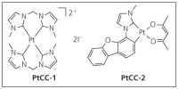 Chemical structures of PtCC-1 and PtCC-2